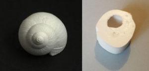 moule en silicone escargot